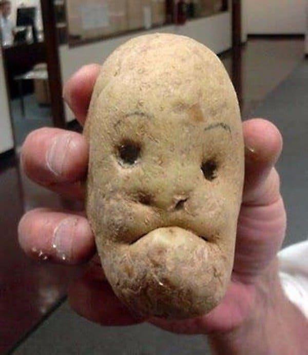 необычный картофель