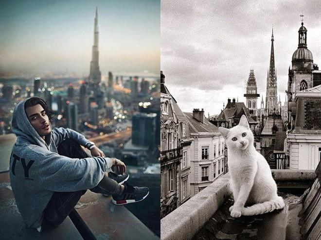 парень и кот на крыше небоскреба
