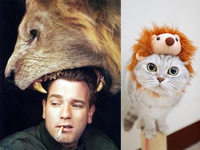 парень с сигаретой и кот с игрушечным львом