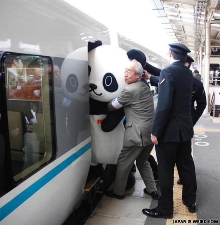 игрушечный панда в поезде