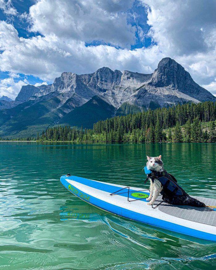 канадский путешественник (1).jpg