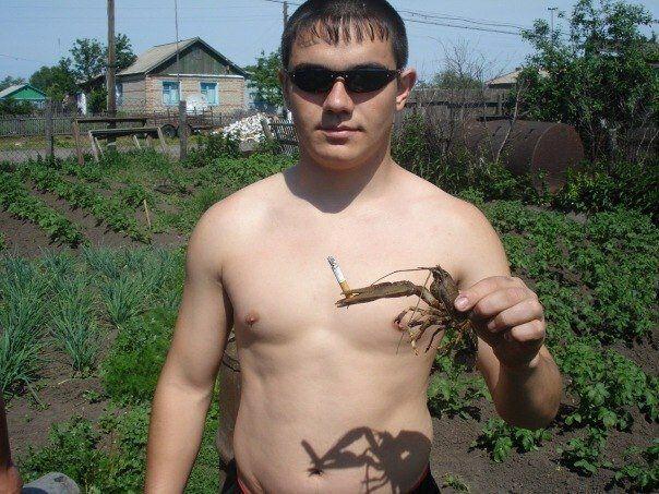 181650_17_trinixy_ru.jpg