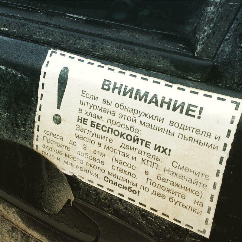 181703_7_trinixy_ru.jpg