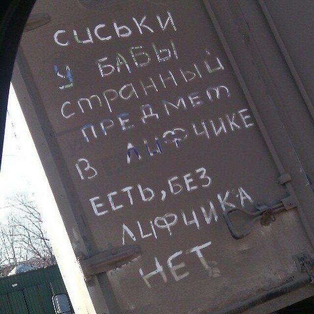 181703_8_trinixy_ru.jpg