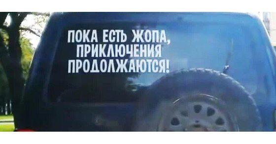 181703_13_trinixy_ru.jpg