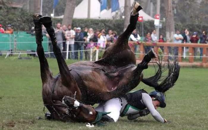 лошадь упала с наездником