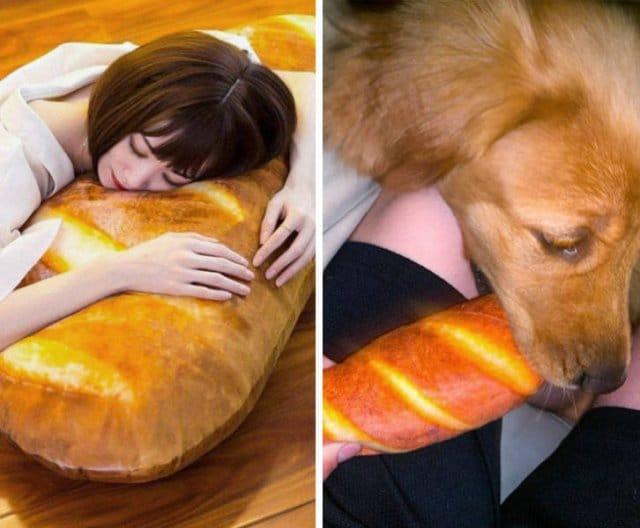 девушка и собака с подушкой