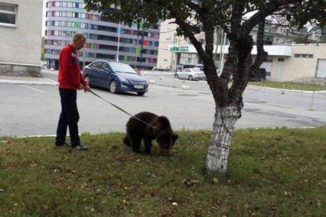 мужчина с медвежонком на поводке