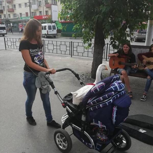 девушка с коляской на улице