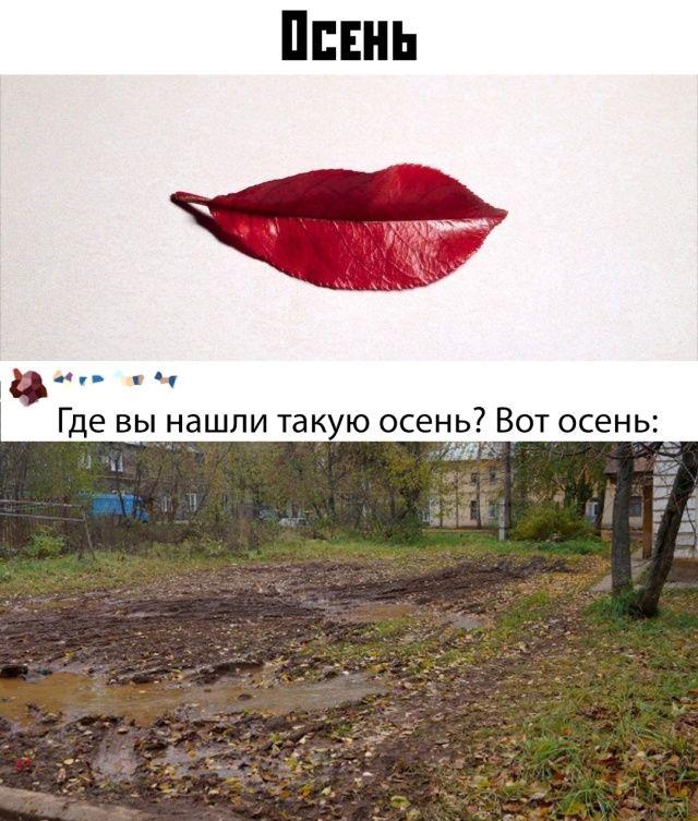 124107_51162.jpg