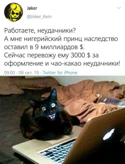 1570747596_prikol-50.jpg