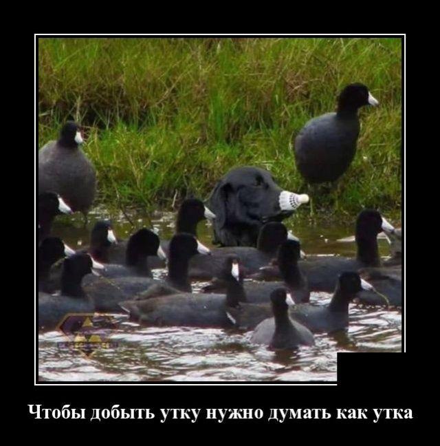 1571941805_0008.jpg