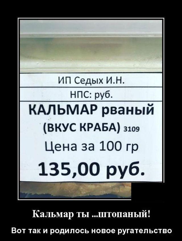 1571941787_0015.jpg