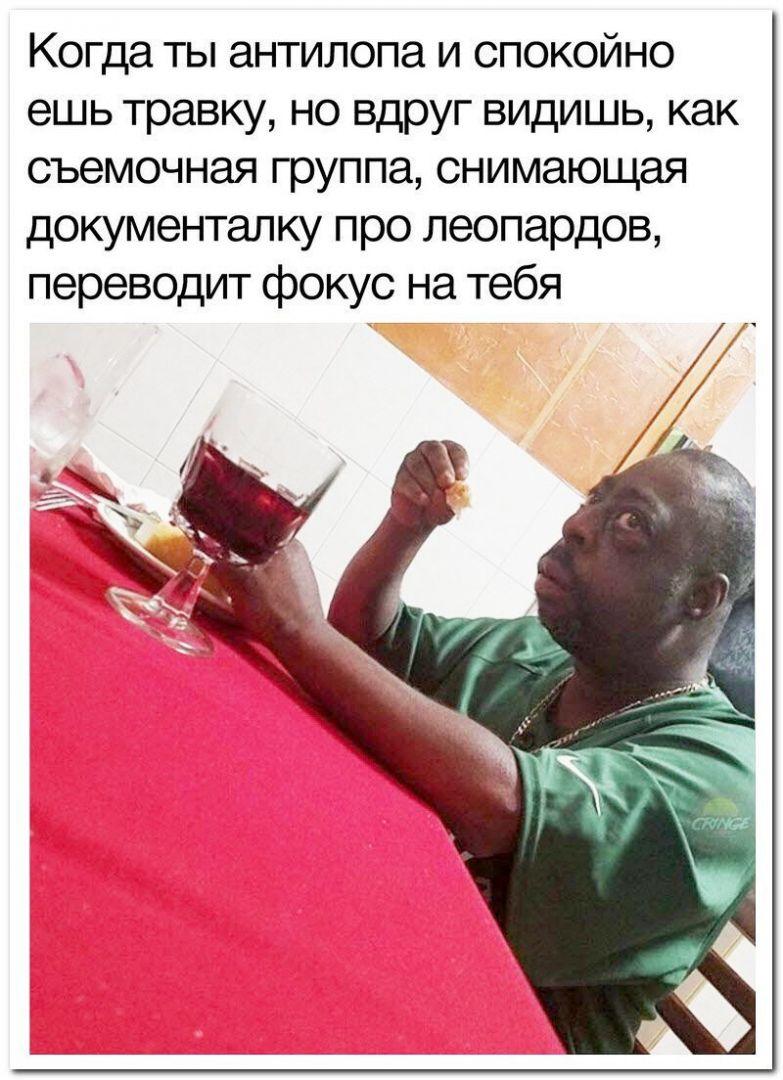 183090_18_trinixy_ru.jpg