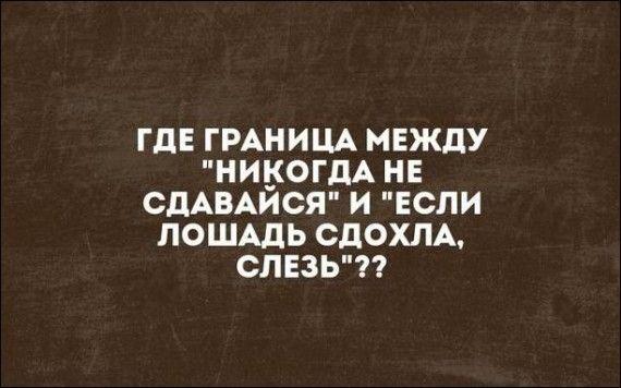 1572170490_atkritka-25102019-007.jpg