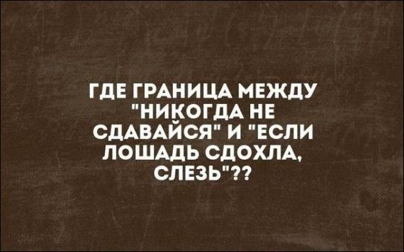 126742_64231.jpg