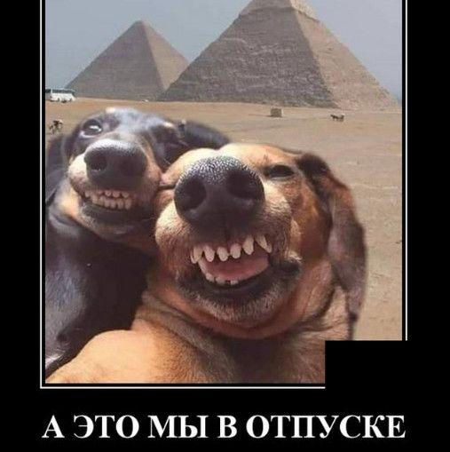 126765_40647.jpg