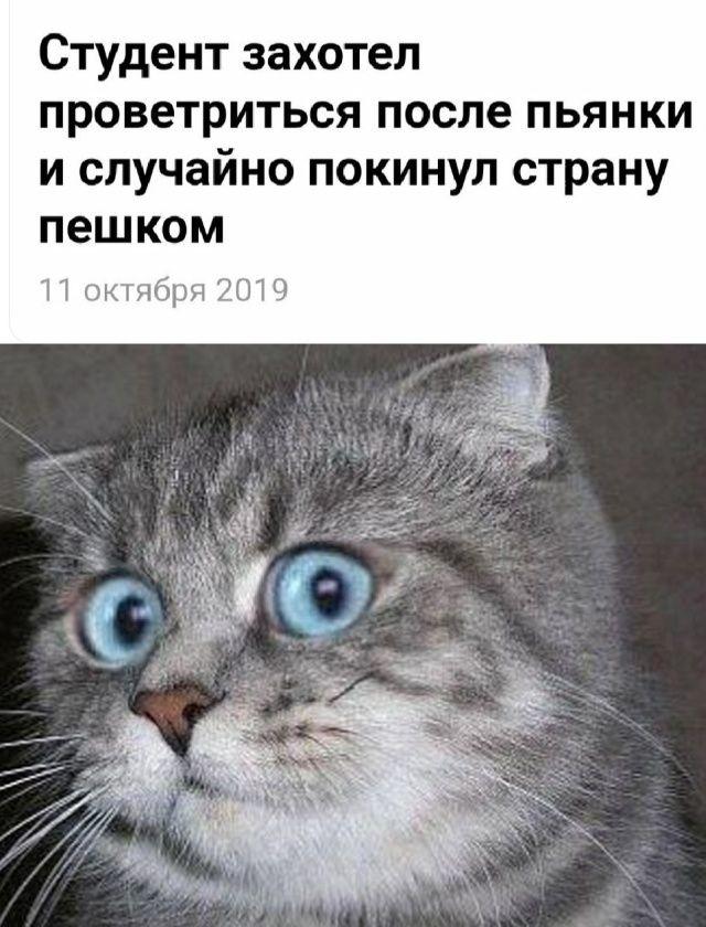 1571081451_0067.jpg