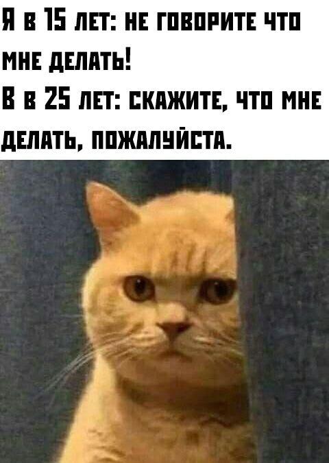 1571081419_0035.jpg