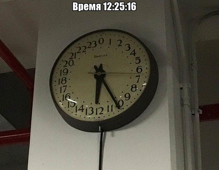 1571081469_0012.jpg