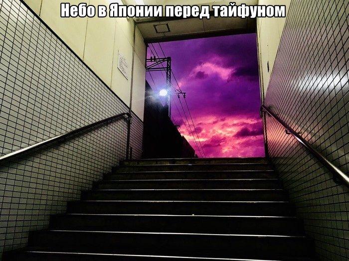 1571081452_0016.jpg