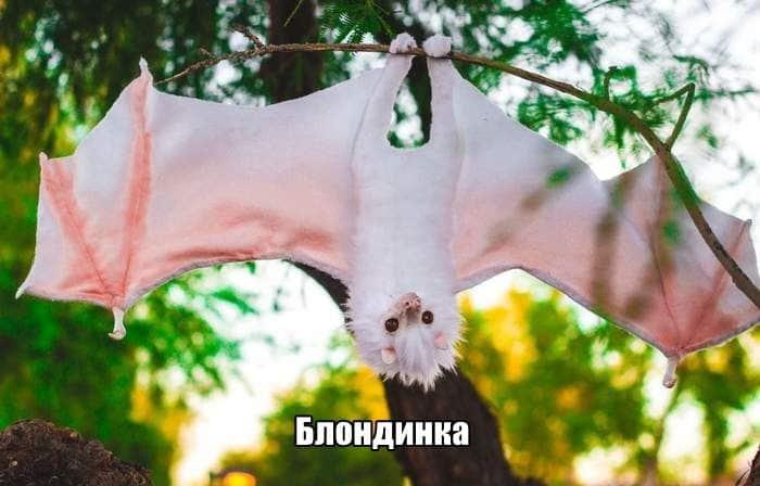 1571081429_0014.jpg