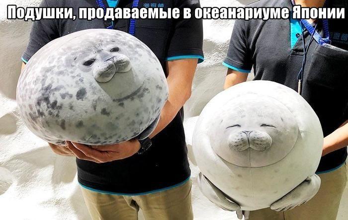 1571081399_0010.jpg