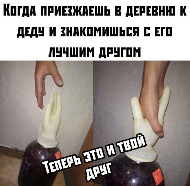 132000_82368.jpg