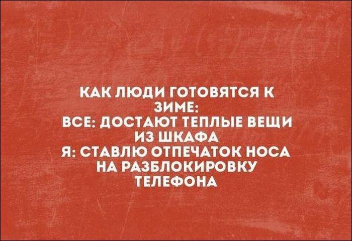 136856_56558.jpg