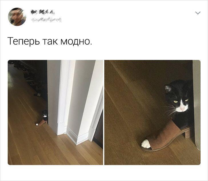137831_56012.jpg