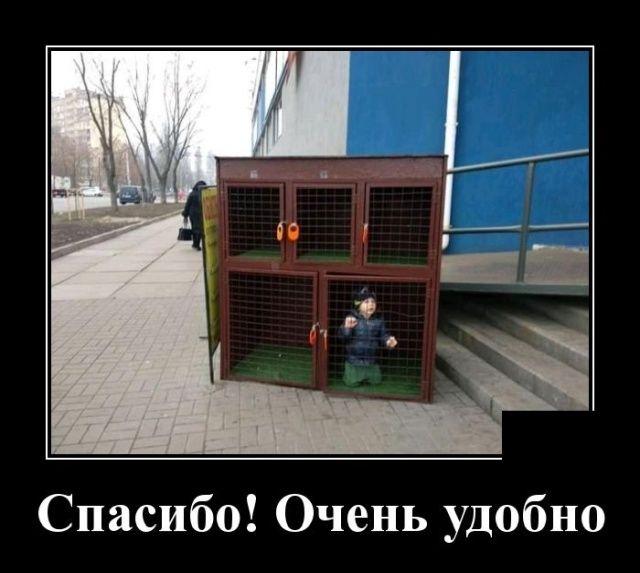 75f7888b_resizedScaled_740to662.jpg