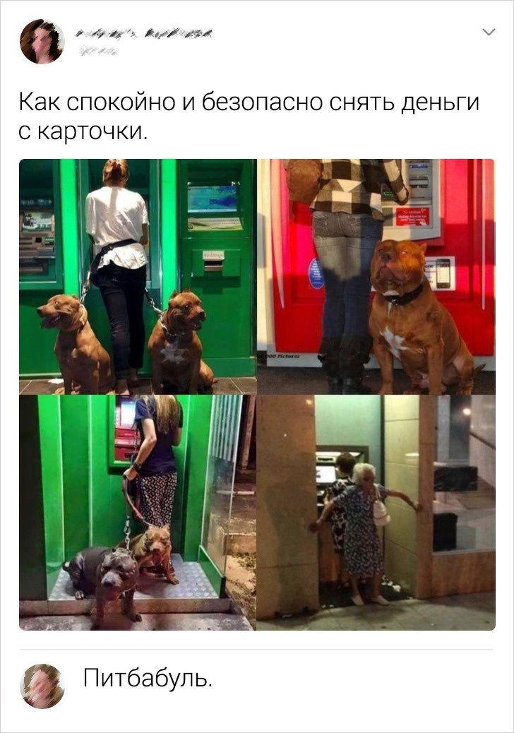 socsetey-kommentariev-sarkastichnyh-citaty-vkontakte-vkontakte-smeshnye-statusy