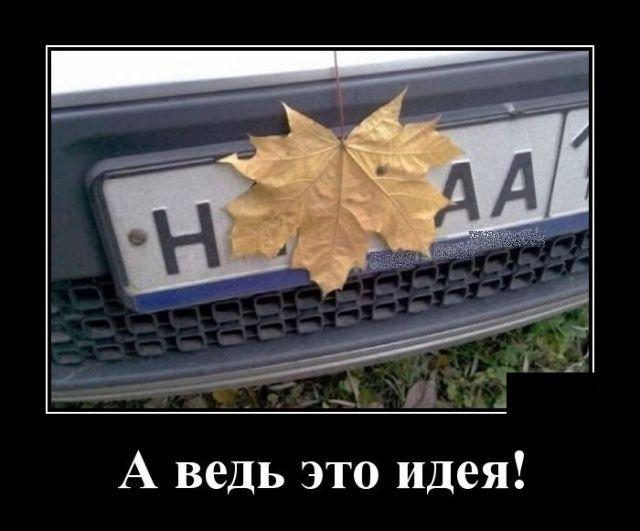 139224_93351.jpg