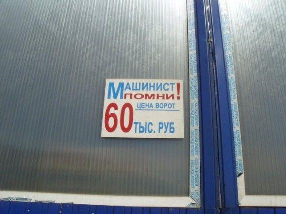 1575622542_185368_14_trinixy_ru.jpg
