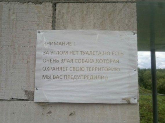 1575622677_185368_7_trinixy_ru.jpg
