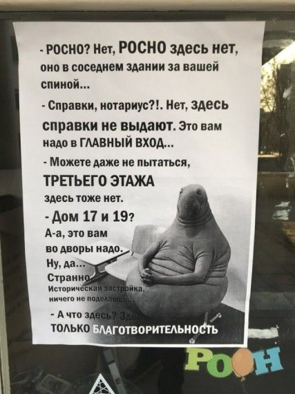 1575622702_185368_2_trinixy_ru.jpg