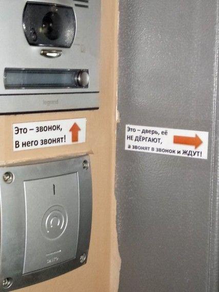 1575622582_185368_17_trinixy_ru.jpg
