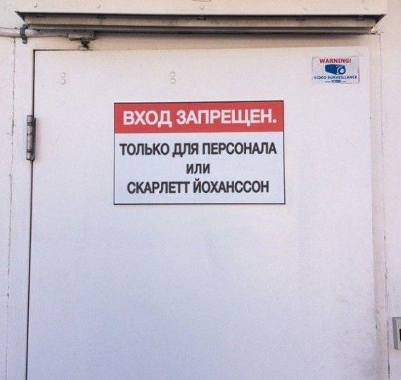 1575622592_185368_15_trinixy_ru.jpg