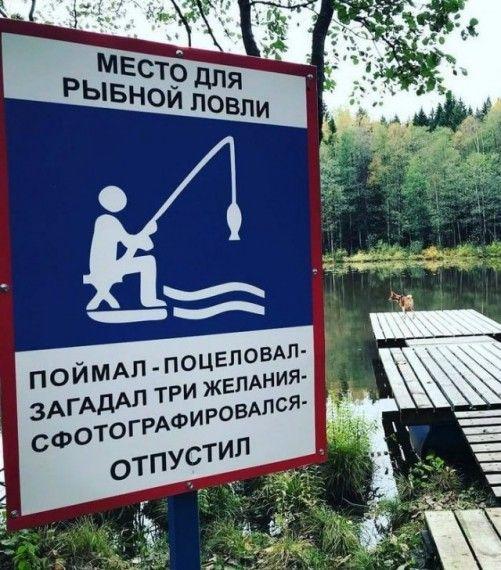 1575621836_185368_20_trinixy_ru.jpg