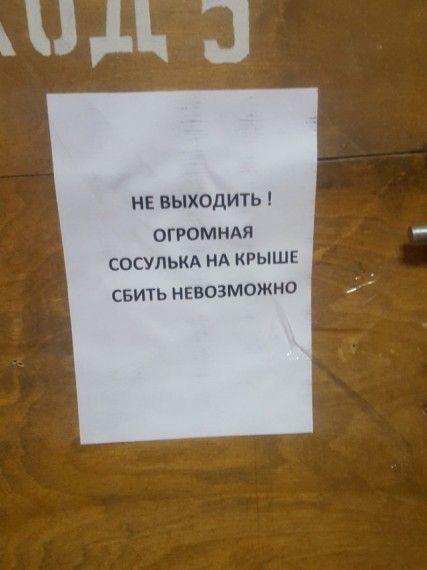 1575622608_185368_18_trinixy_ru.jpg