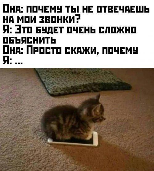 1575990986_kartinki-32.jpg