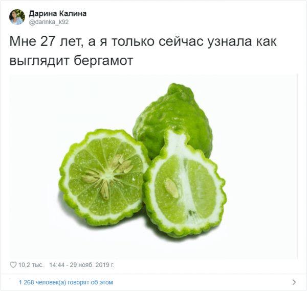 140852_77624.jpg