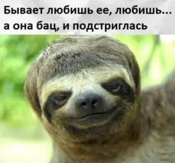 1576271387_150766845_3416556_i_31_.jpg