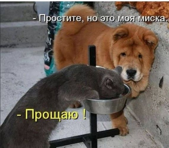 1576269784_151120376_img_20191207_232439.jpg
