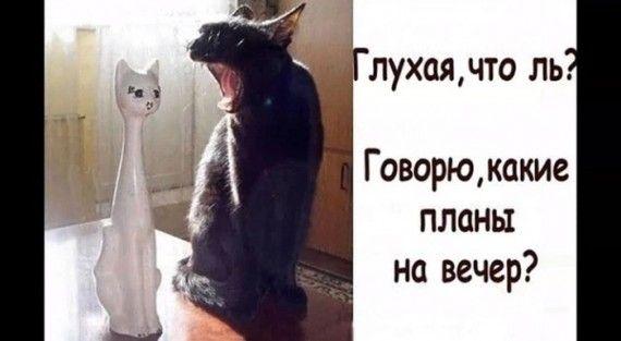 1576269752_151120369_img_20191127_230240.jpg
