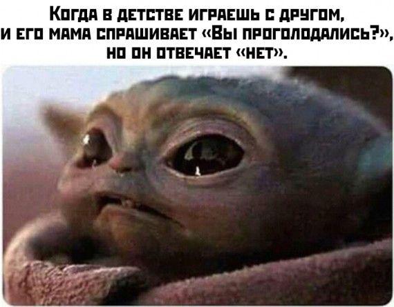 1576699515_1576663807_podb_30.jpg
