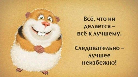 1576529420_abbf50fe61ab.jpg