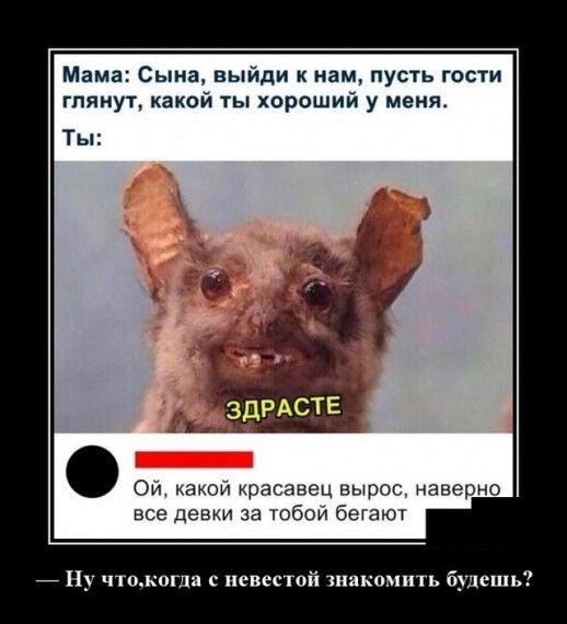 1576786274_1576768090_demotivatory_19.jpg