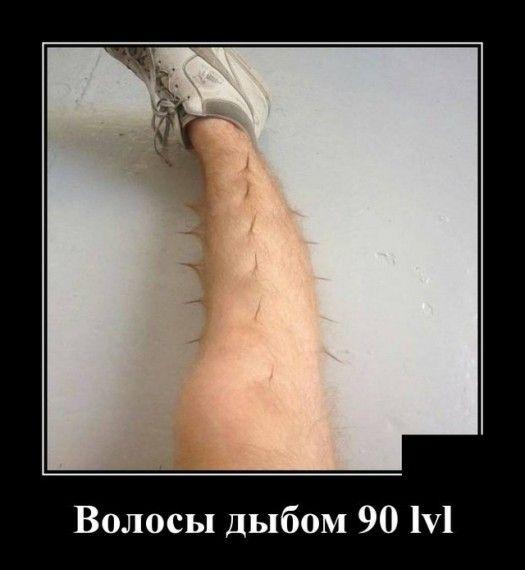 1576785623_1576677403_demotivatory_09.jpg