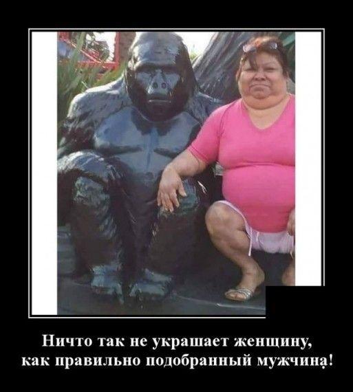 1576786267_1576768140_demotivatory_18.jpg